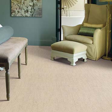 Caress Carpet by Shaw | Traverse City, MI