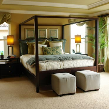STAINMASTER® Carpet | Traverse City, MI